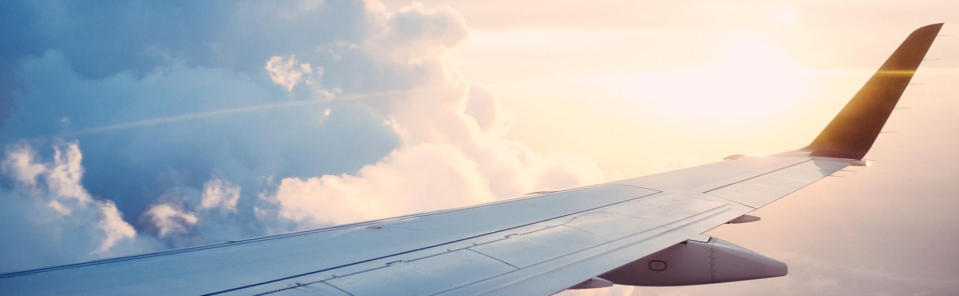 Flexed International Citizen Driving Aeroplane Wing Cropped